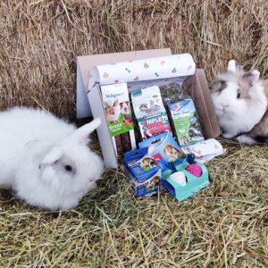 Knaagbox met konijnen - Dierencadeau - Oudsbergen