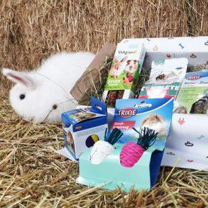Knaagbox met konijn - Dierencadeau - Oudsbergen