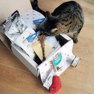 Kat zoekt in kattenbox - Dierencadeau - Oudsbergen